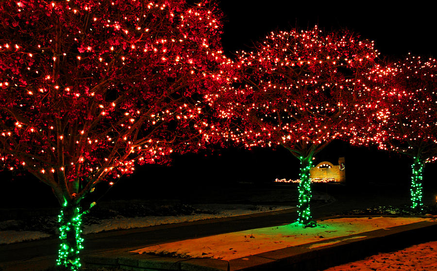 usa photograph christmas lights red and green by leeann mclanegoetz mclanegoetzstudiollccom - Green And Red Christmas Lights