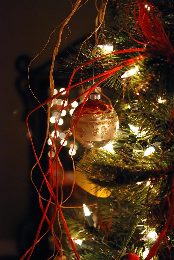 Festive Photograph - Christmas Ornament by Charles Bacon Jr