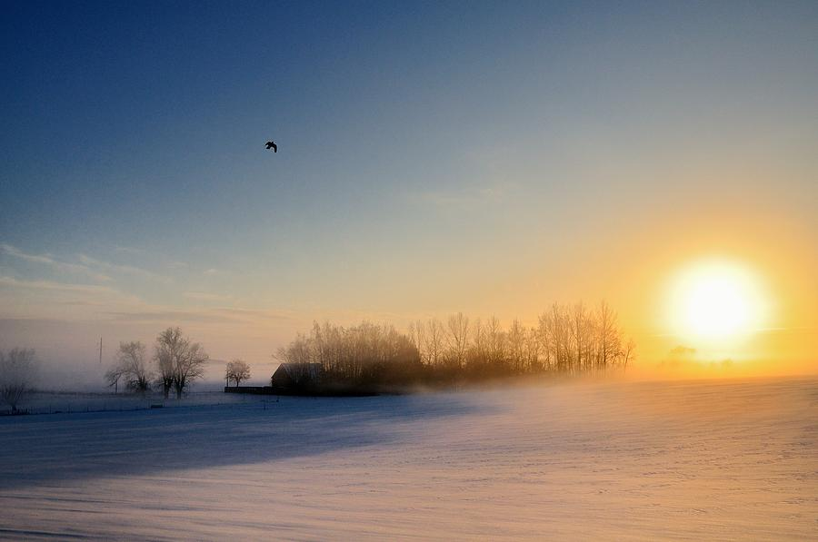 Horizontal Photograph - Christmas Sunset by Pierre Hanquin Photographie