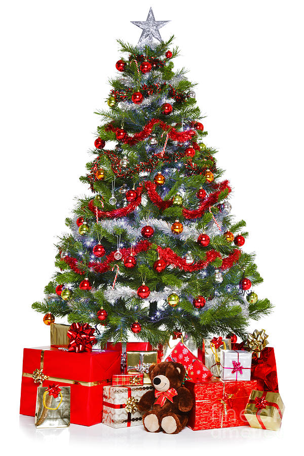 Christmas Tree And Presents Isolated On White Photograph By