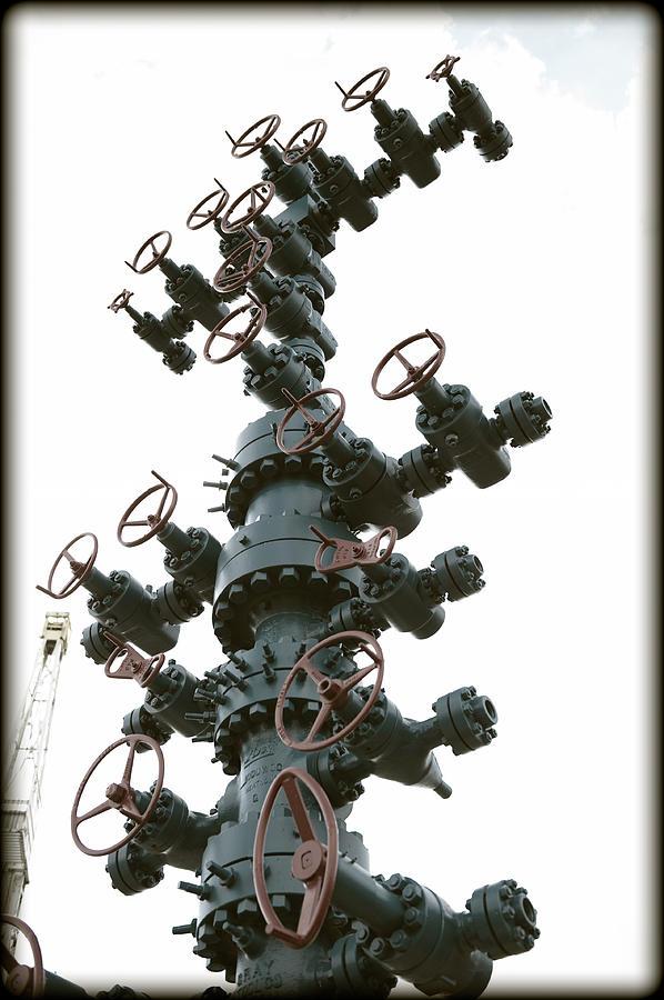 Christmas Photograph - Christmas Tree by Ricky Barnard