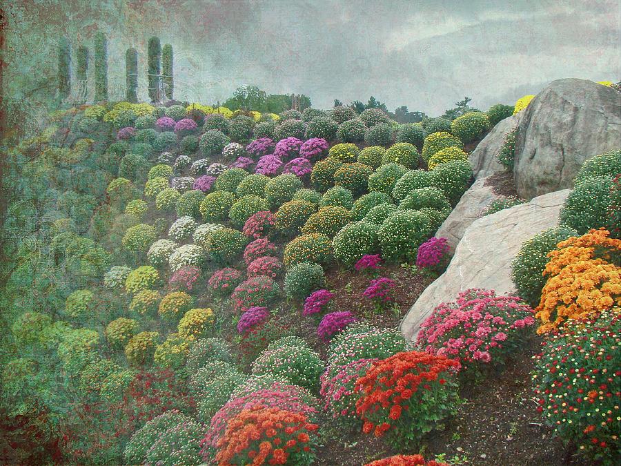 Chrysanthemum Photograph - Chrysanthemum Garden - Otts Greenhouse Schwenksville Pa by Mother Nature