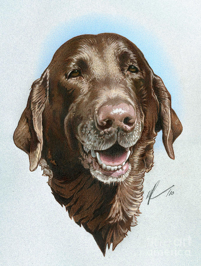 Dog Painting - Chubbs by Marshall Robinson