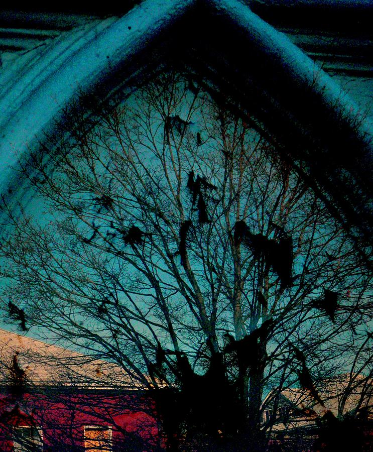 Window Photograph - Church Window by Chris Berry