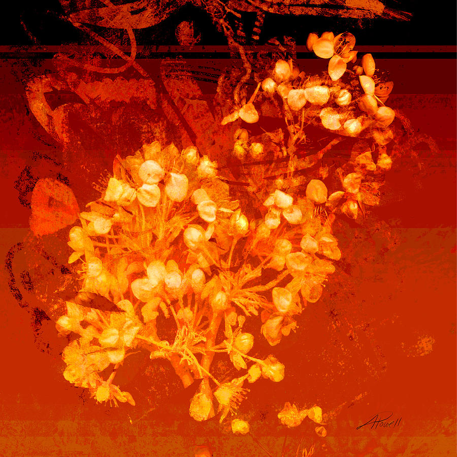 Flower Mixed Media - Cinnabar  by Ann Powell