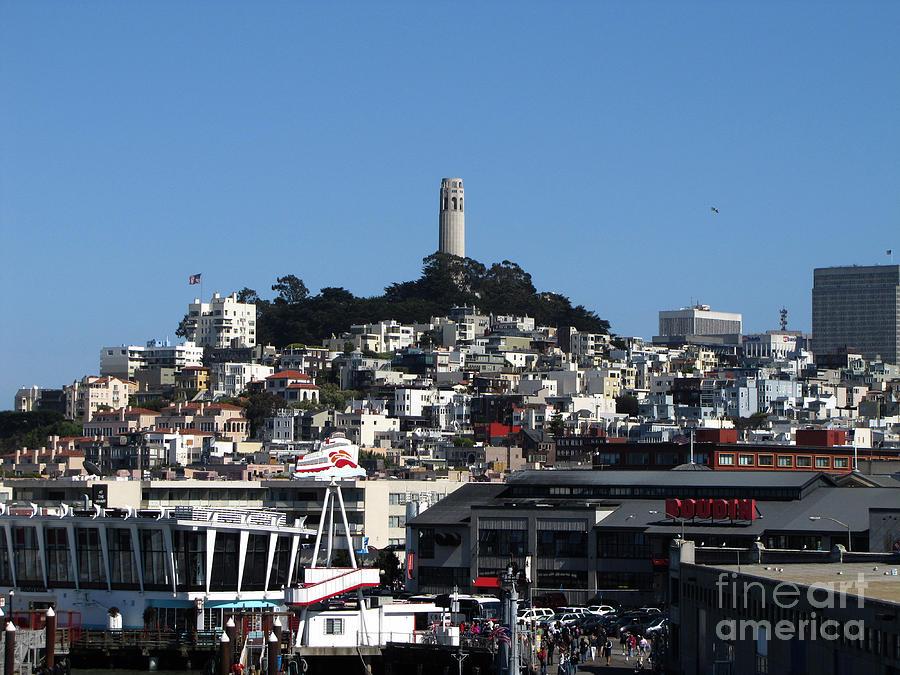 Photo Photograph - City Of San Francisco by Serena Ballard