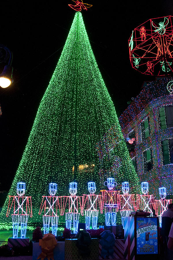 Holidays Digital Art - Cjristmas Tree In Lights by Charles  Ridgway
