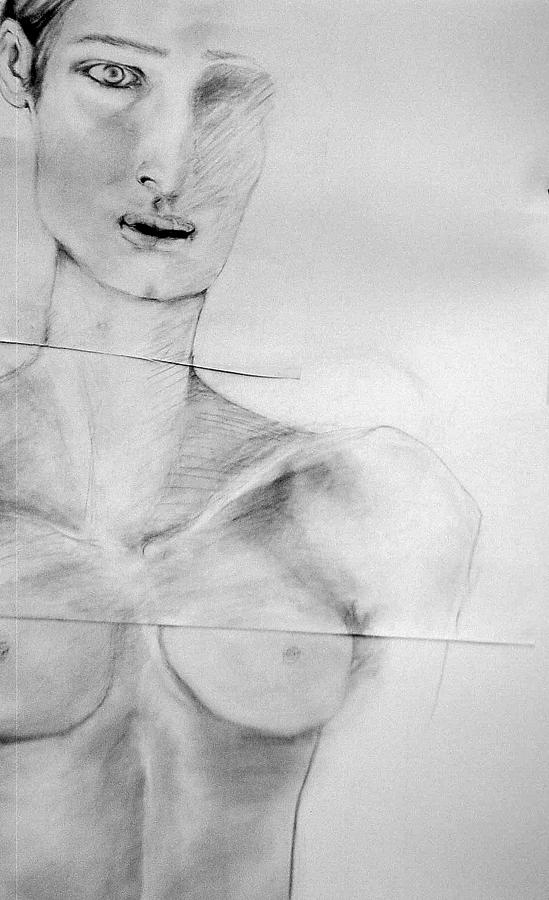 Nude Torso With Head   Female Drawing - Clare 3 by Carole Osullivan
