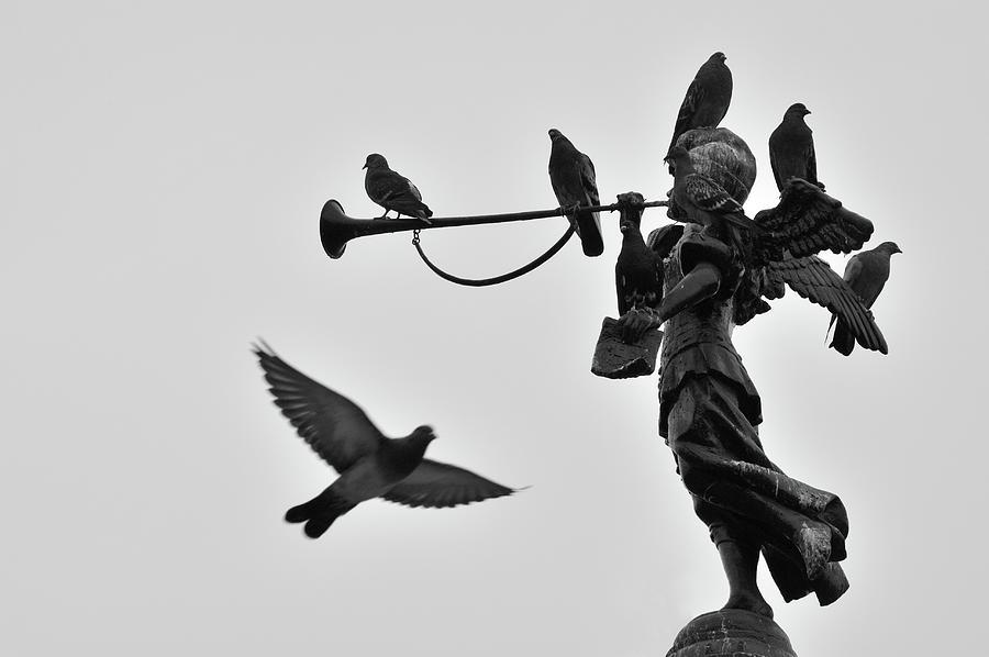 Horizontal Photograph - Clarinet Statue by CarlosAlbertoPhoto