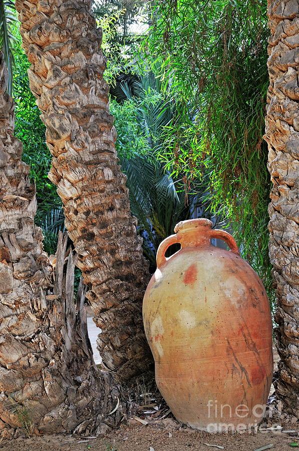 Freshness Photograph - Clay Jar By Palm Tree by Sami Sarkis