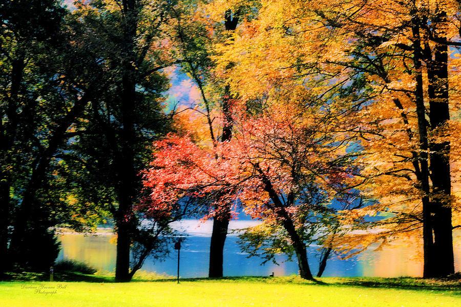 Autumn Photograph - Clear Creek Autumn by Darlene Bell