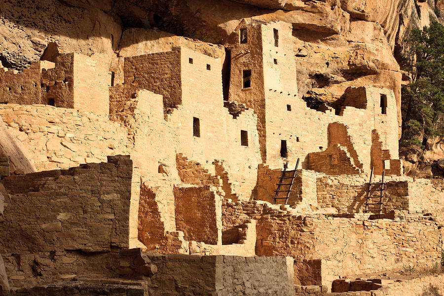 Ancient Photograph - Cliff Palace by Adam Pender