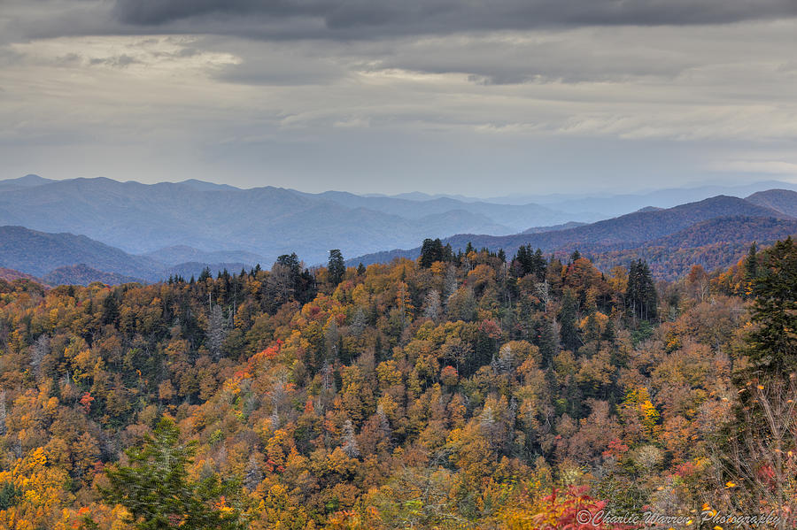 Clingmans Dome Photograph - Clingmans Dome IIi by Charles Warren