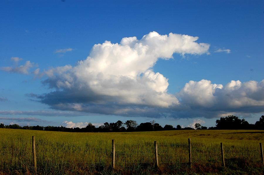 Cloud Photograph - Cloud by Beverly Hammond