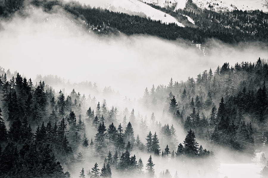 Horizontal Photograph - Clouds Moving Through Forest In French Alps by Philipp Klinger