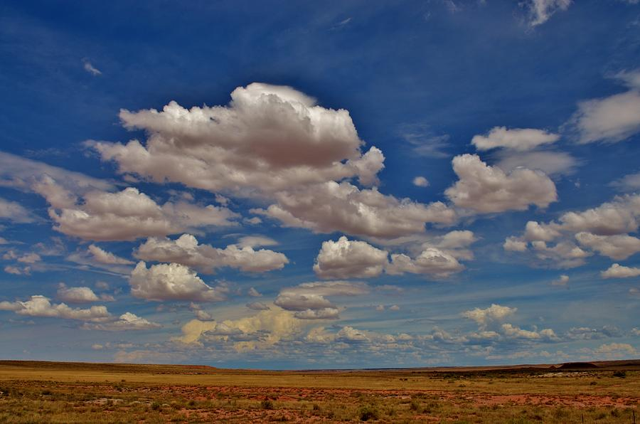Clouds Photograph - Clouds by Sara Edens