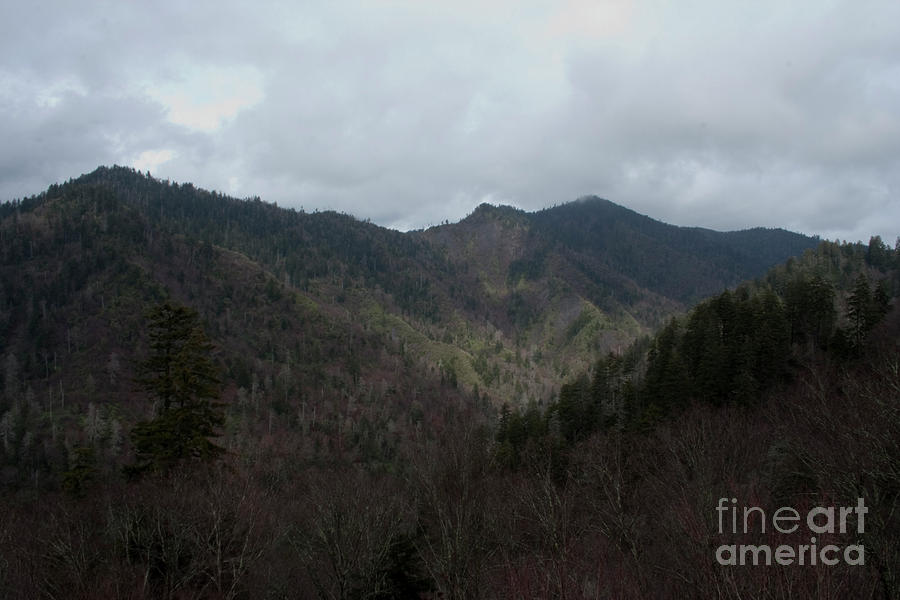 Landscape Photograph - Cloudy Mountain by Michael Waters