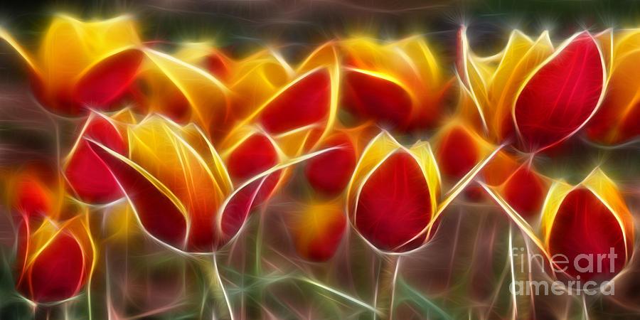 Floral Digital Art - Cluisiana Tulips Fractal by Peter Piatt