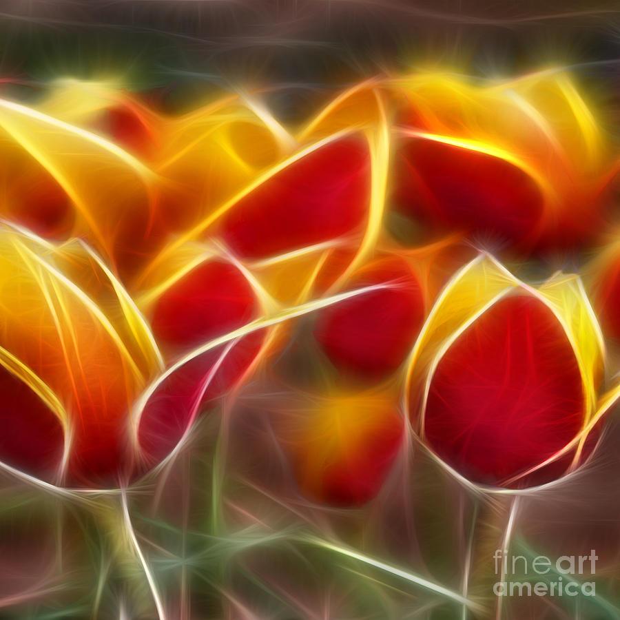 Tulips Digital Art - Cluisiana Tulips Triptych Panel 2 by Peter Piatt