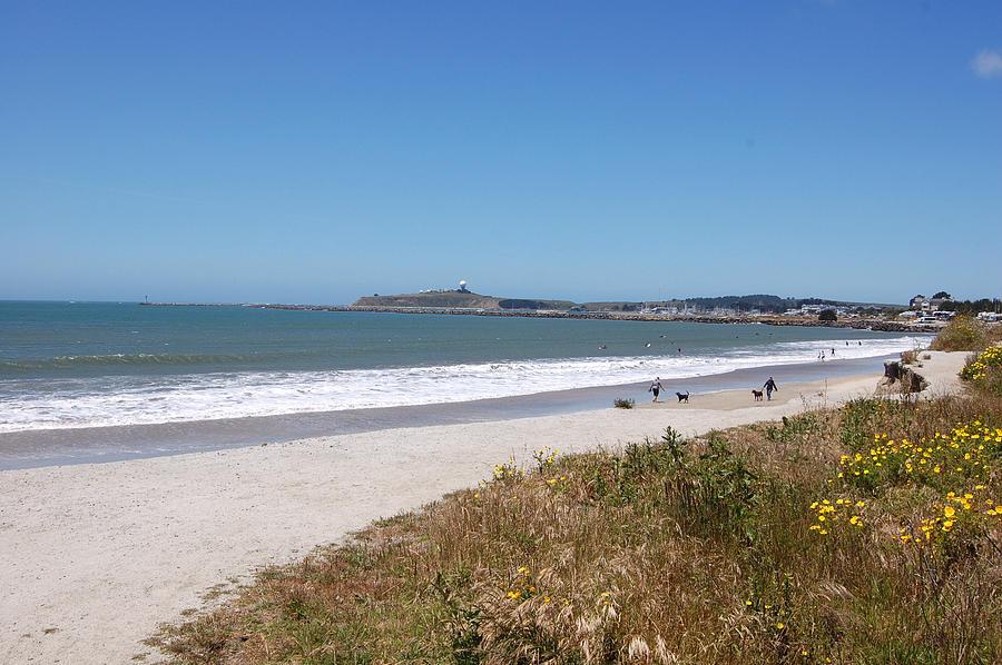Coastside California by Carolyn Donnell