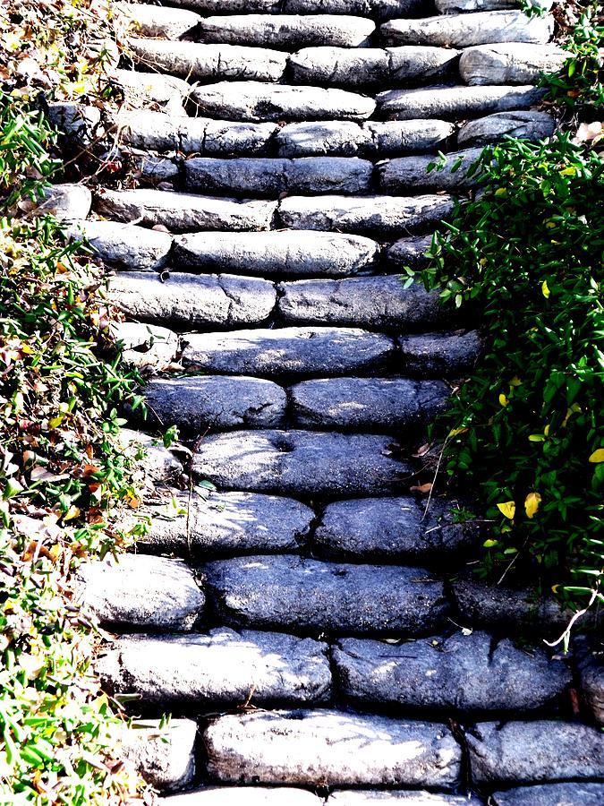 Paintings Of Cobblestone Paths : Cobble stone path photograph by elizabeth simpson