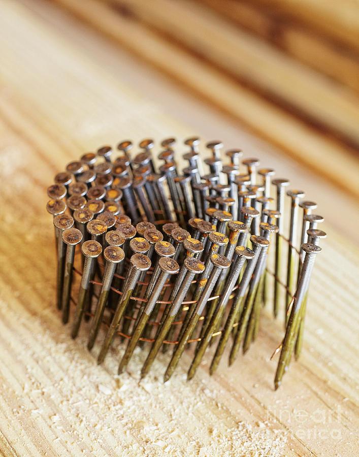 Board Photograph - Coiled Framing Nails by Skip Nall