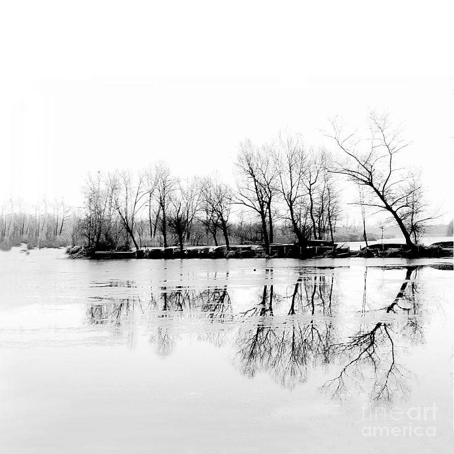 Winter Photograph - Cold Silence by Hannes Cmarits