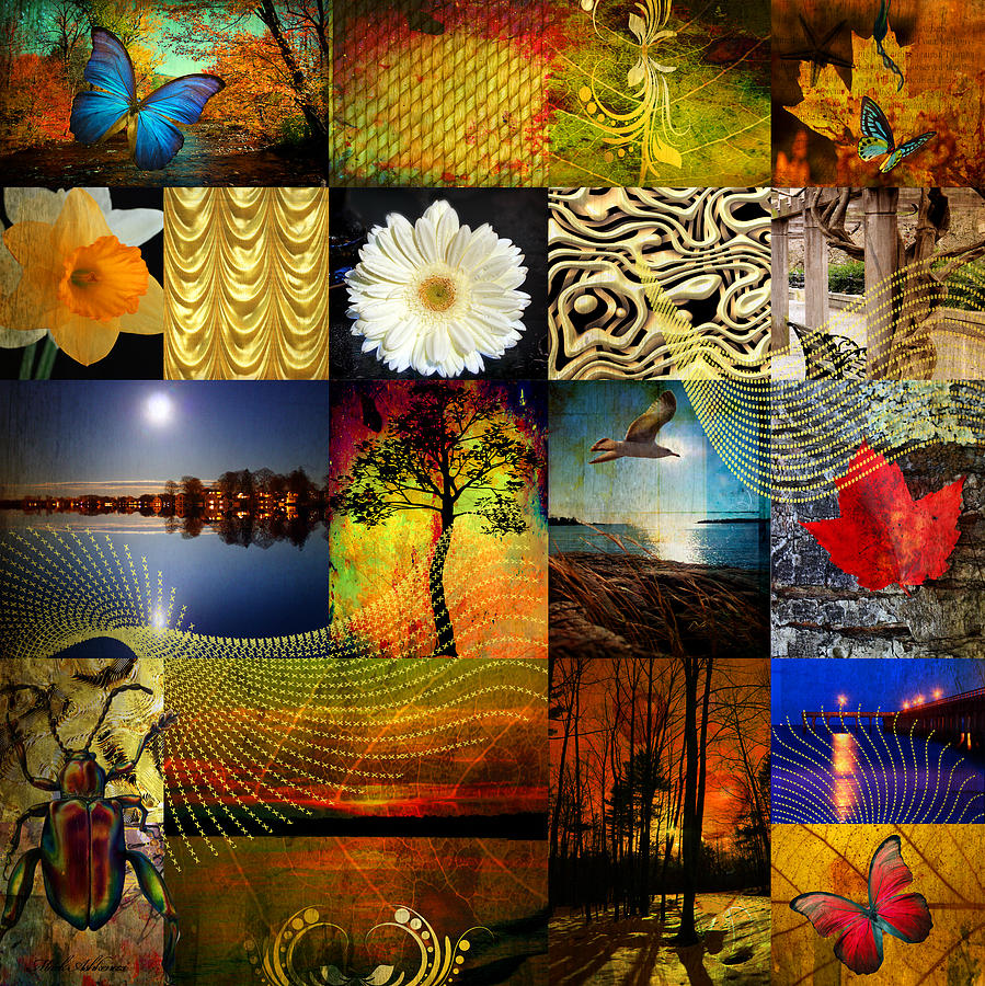 Collage Photograph - Collage Of Colors by Mark Ashkenazi