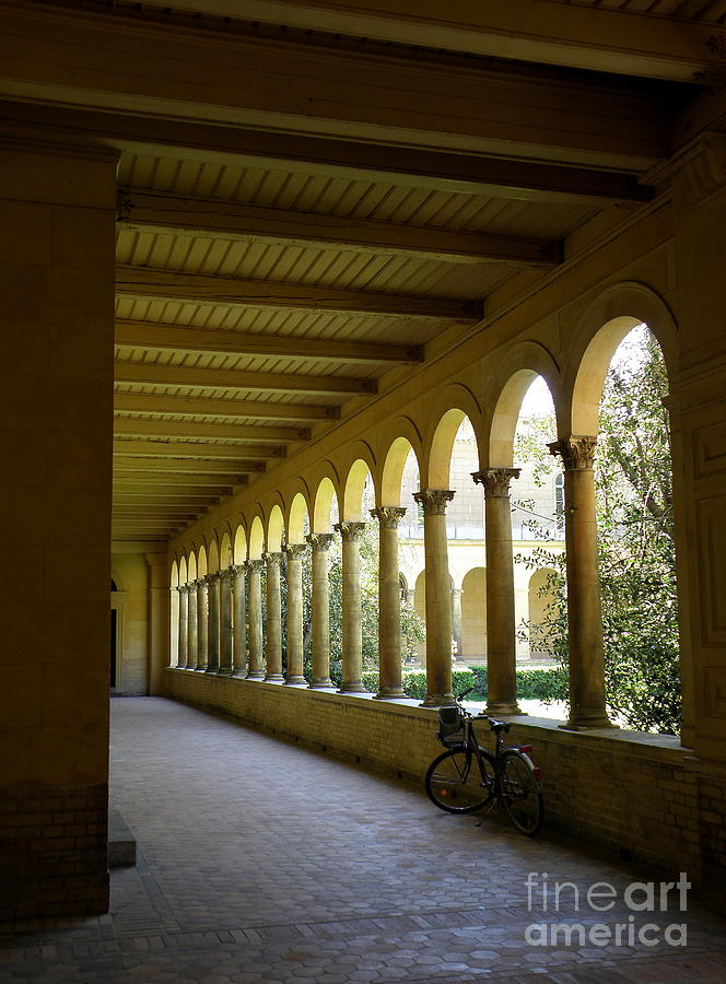 Architecture Photograph - Colonnade by Tanya  Searcy