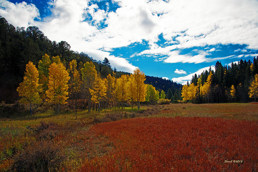 Aspens Photograph - Colorado Mountain Autumn View by Stephen  Johnson