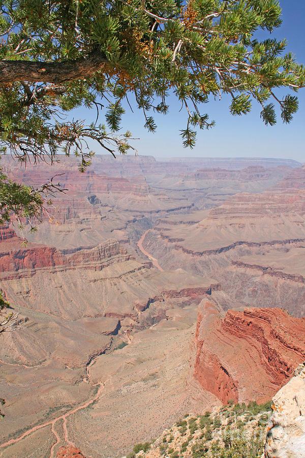 Adventure Photograph - Colorado River Grand Canyon National Park Usa Arizona by Audrey Campion