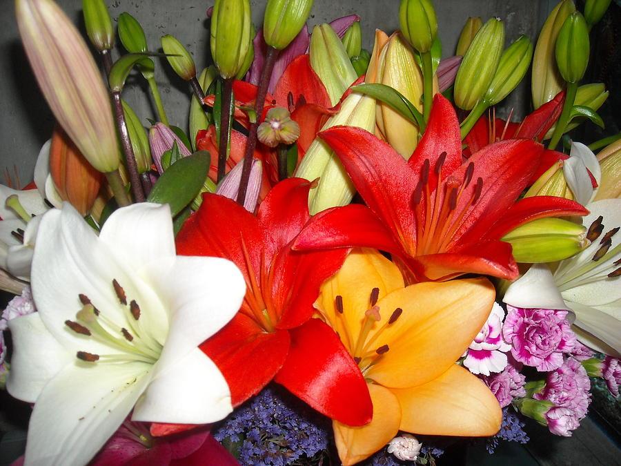 Bouquet Photograph - Colorful Bouquet Of Lilies - Lilium by Liliana Ducoure