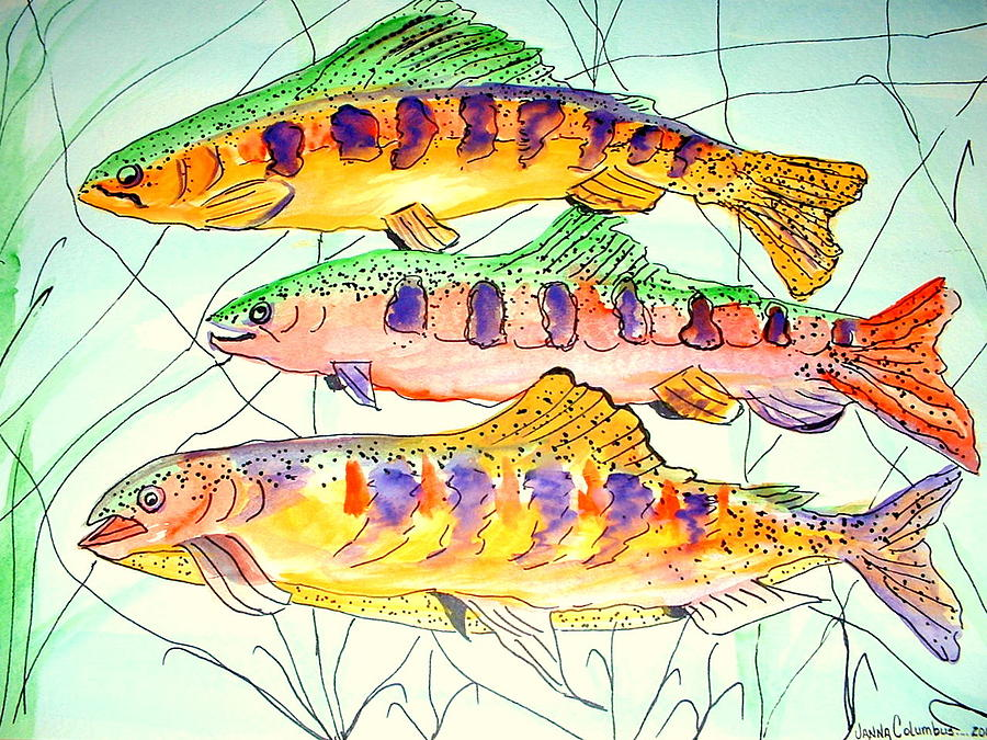 Three Fish Painting - Colorful Trout by Janna Columbus
