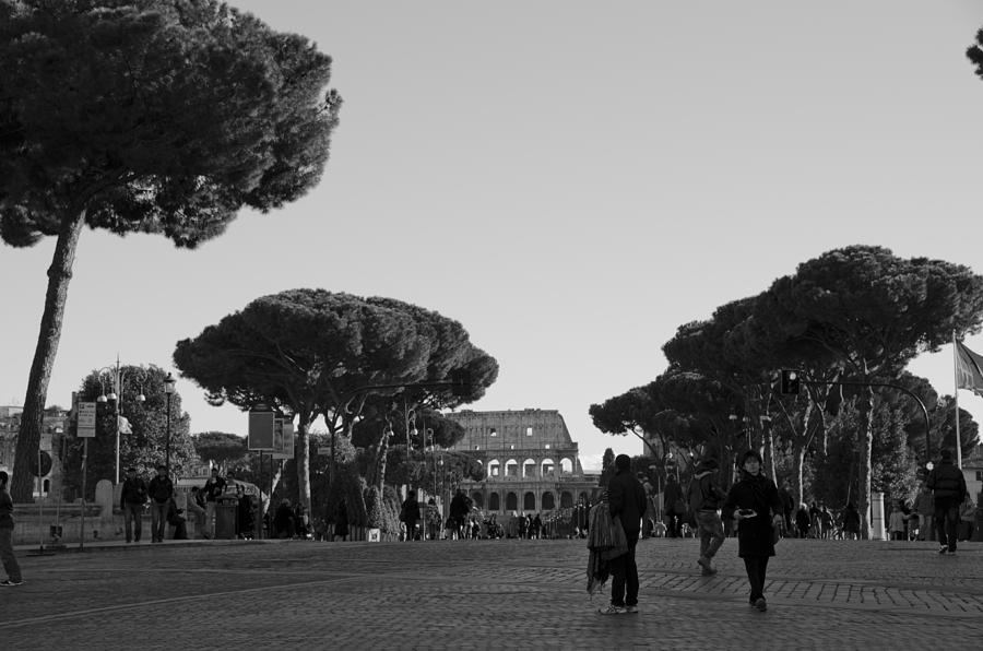Rome Photograph - Colosseum by Marcel Krasner