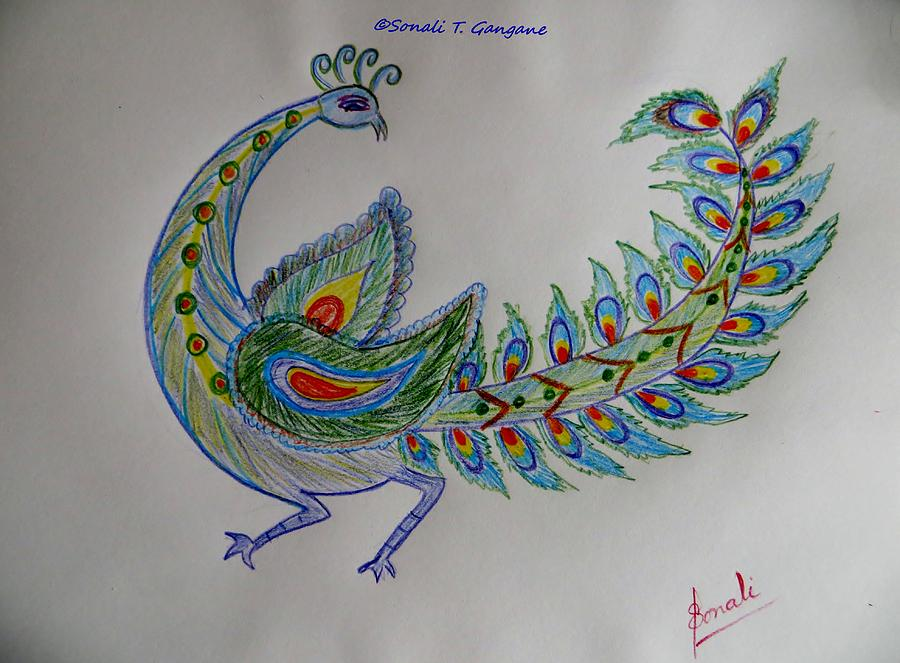 Peacock Drawing - Colourful Bird by Sonali Gangane