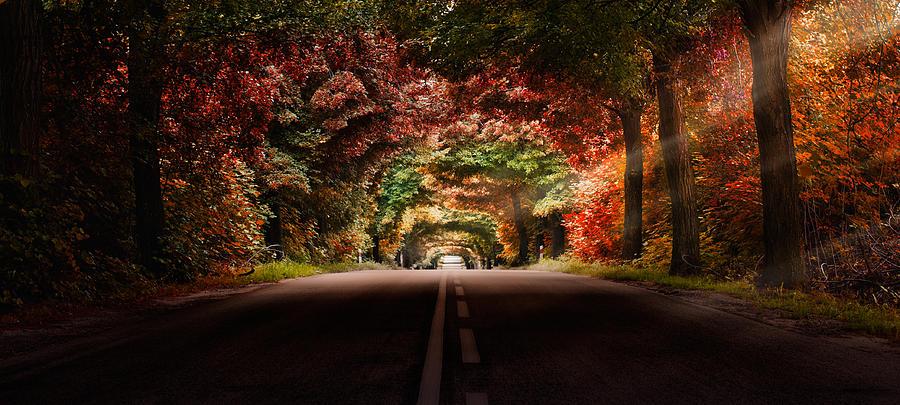 Colors Photograph - Colourful Way by Marek Czaja