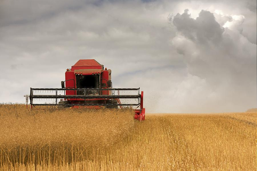 Day Photograph - Combine Harvester, North Yorkshire by John Short