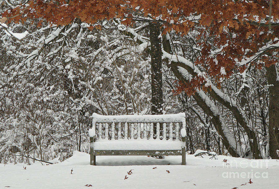 Prints Photograph - Come Sit Awhile by Inspired Nature Photography Fine Art Photography