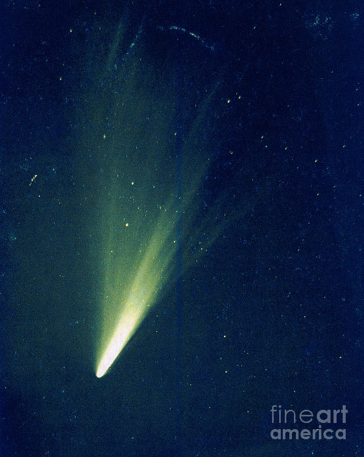 Science Photograph - Comet West, 1976 by Science Source