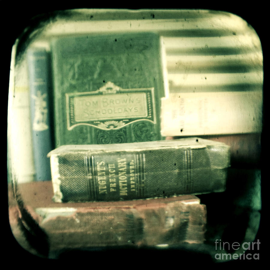 Antique Photograph - Comprehension by Andrew Paranavitana
