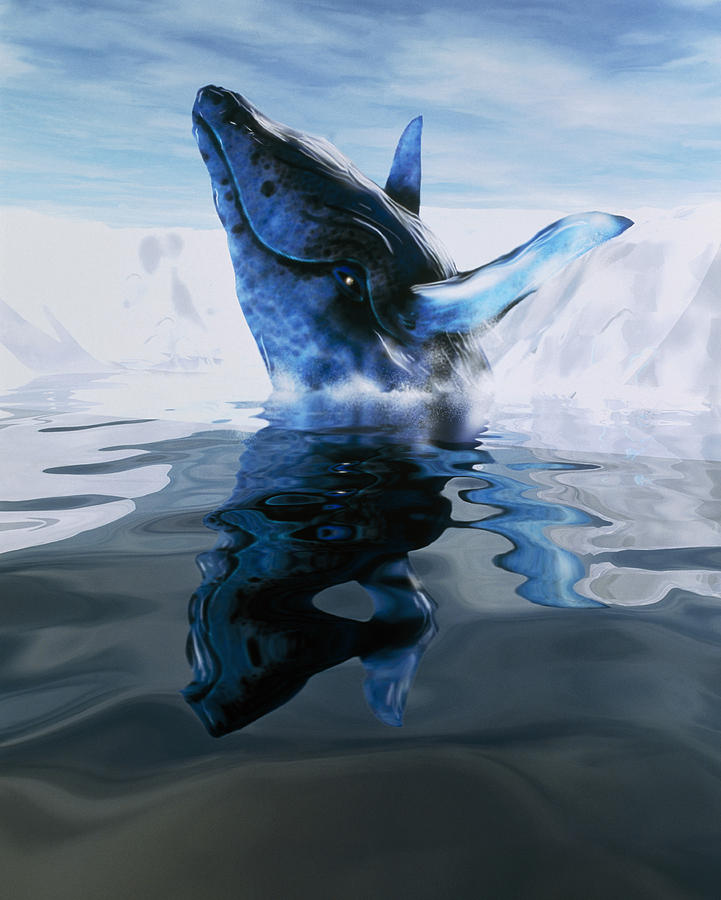 Whale Photograph - Computer Illustration Of A Humpback Whale by Victor Habbick Visions