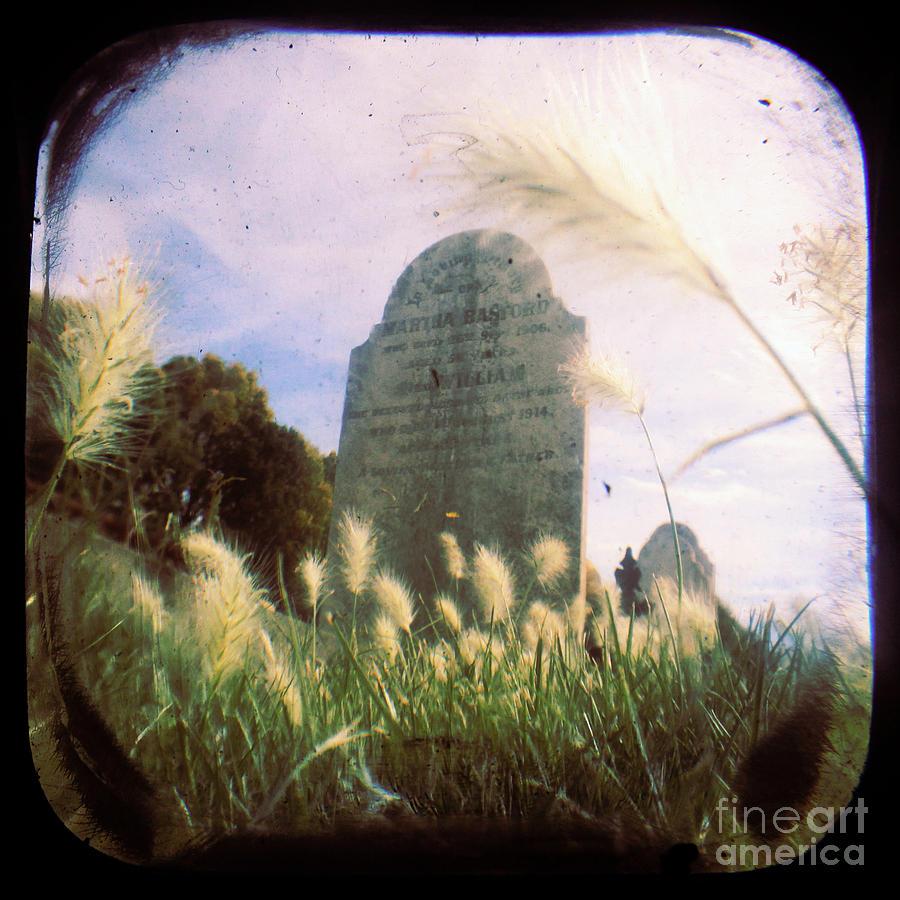 Cemetery Photograph - Concilation by Andrew Paranavitana