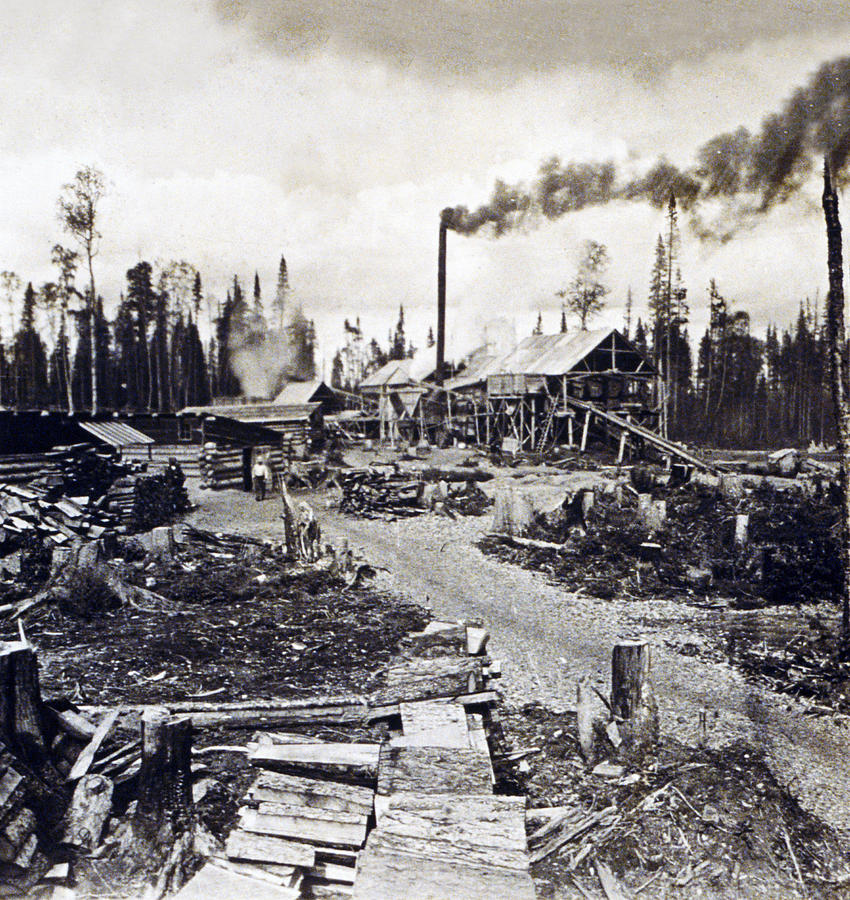 Concord Photograph - Concord New Hampshire - Logging Camp - C 1925 by International  Images