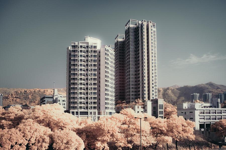 Horizontal Photograph - Concrete Highrise Buildings by Yiu Yu Hoi