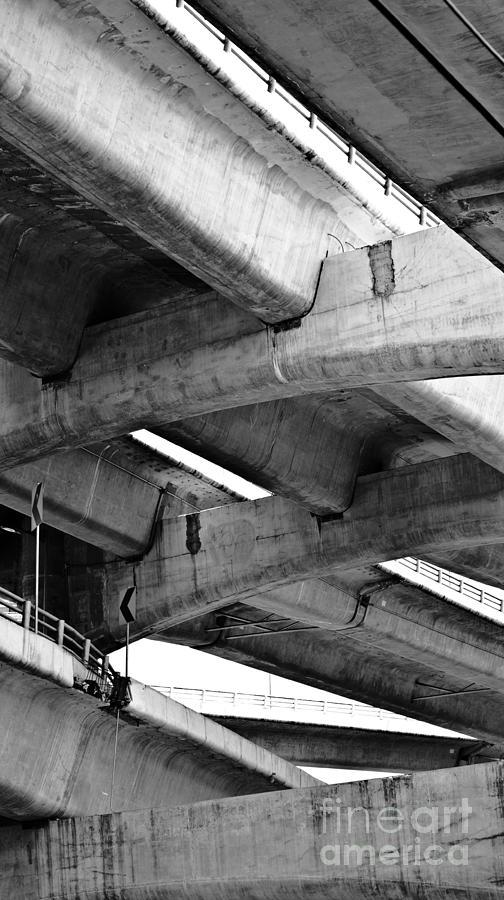 Concrete Photograph - Concrete Jungle Canopy by L E Jimenez