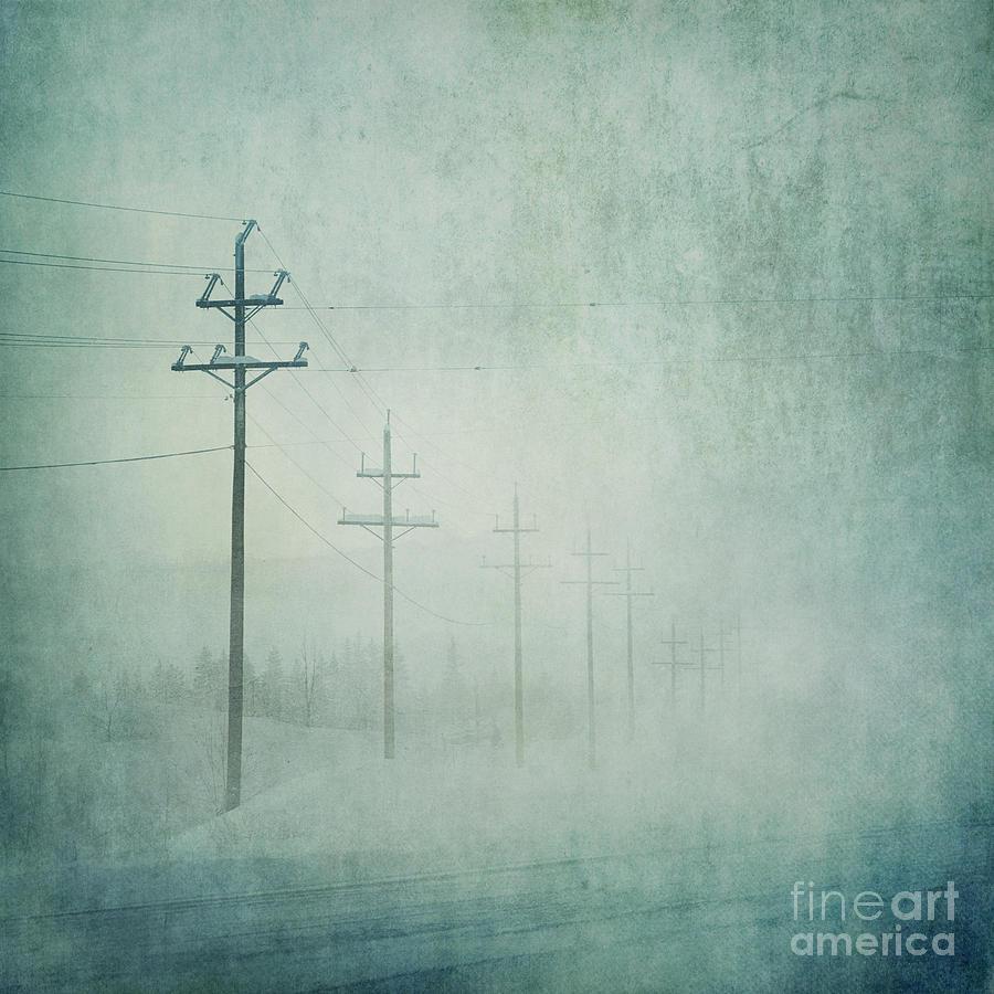 Bleak Photograph - Connenction by Priska Wettstein