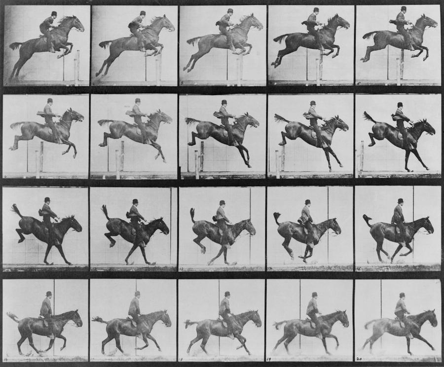 History Photograph - Consecutive Images Of Man Riding by Everett