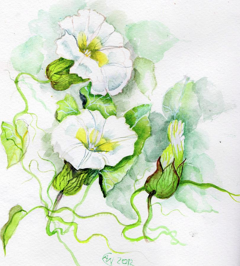 Nature Painting - Convolvulus by Angelina Whittaker Cook