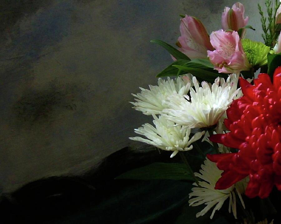 Flowers Photograph - Cool Beauty by Joseph Ferguson