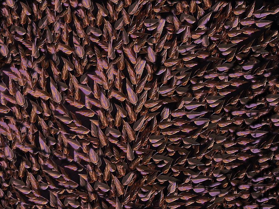 Abstract Digital Art - Copper Leaf by David Dehner